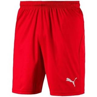Šortky/Bermudy Puma  Liga Shorts Core